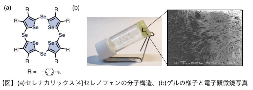非水素結合性ゲルの開発とゲル生成機構の解明に成功 ~ 導電性ゲル、再生医療材料への応用に期待 ~ 北里大学